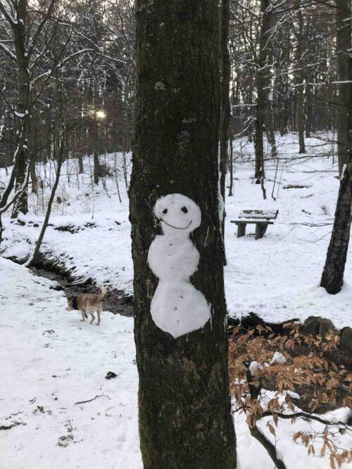 Baum im Winter an dessen Rinde ein kleiner Schneemann aus Schnee geklebt wurde
